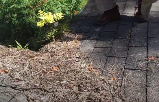 Roof debris on Inspection